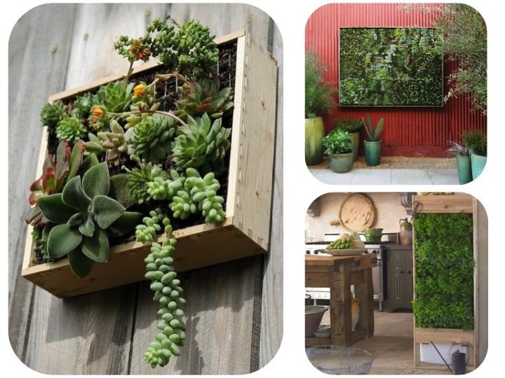 Jardines verticales de pared vertical wall gardens my for Palets jardines verticales