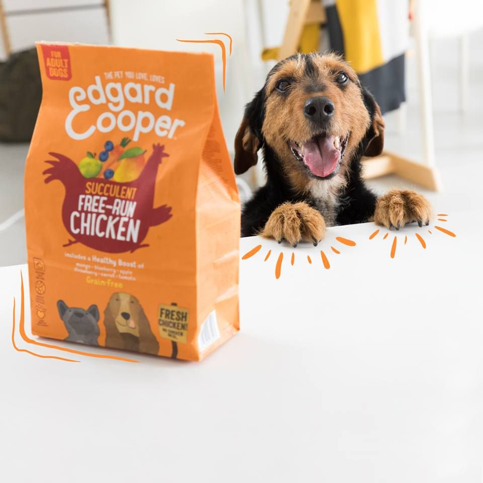 Our Free Run Chicken Dry Dog Food Contains Quality Protein For A