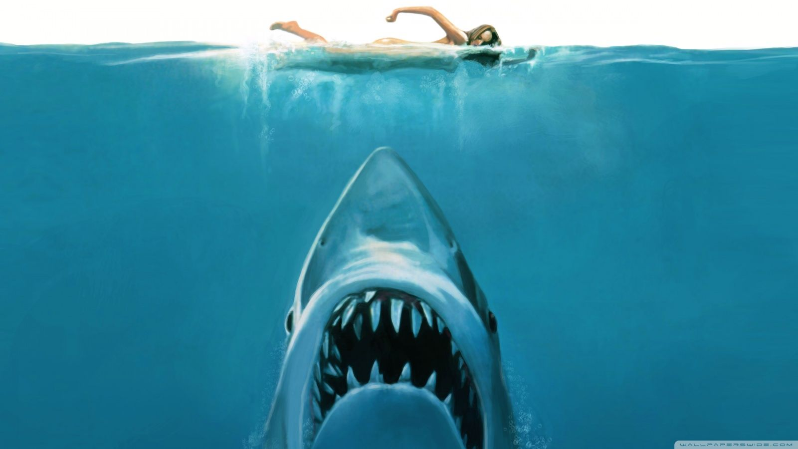 Jaws Wallpaper Widescreen | Wallpapers For Desktop | Pinterest | Jaws Movie  And Wallpaper