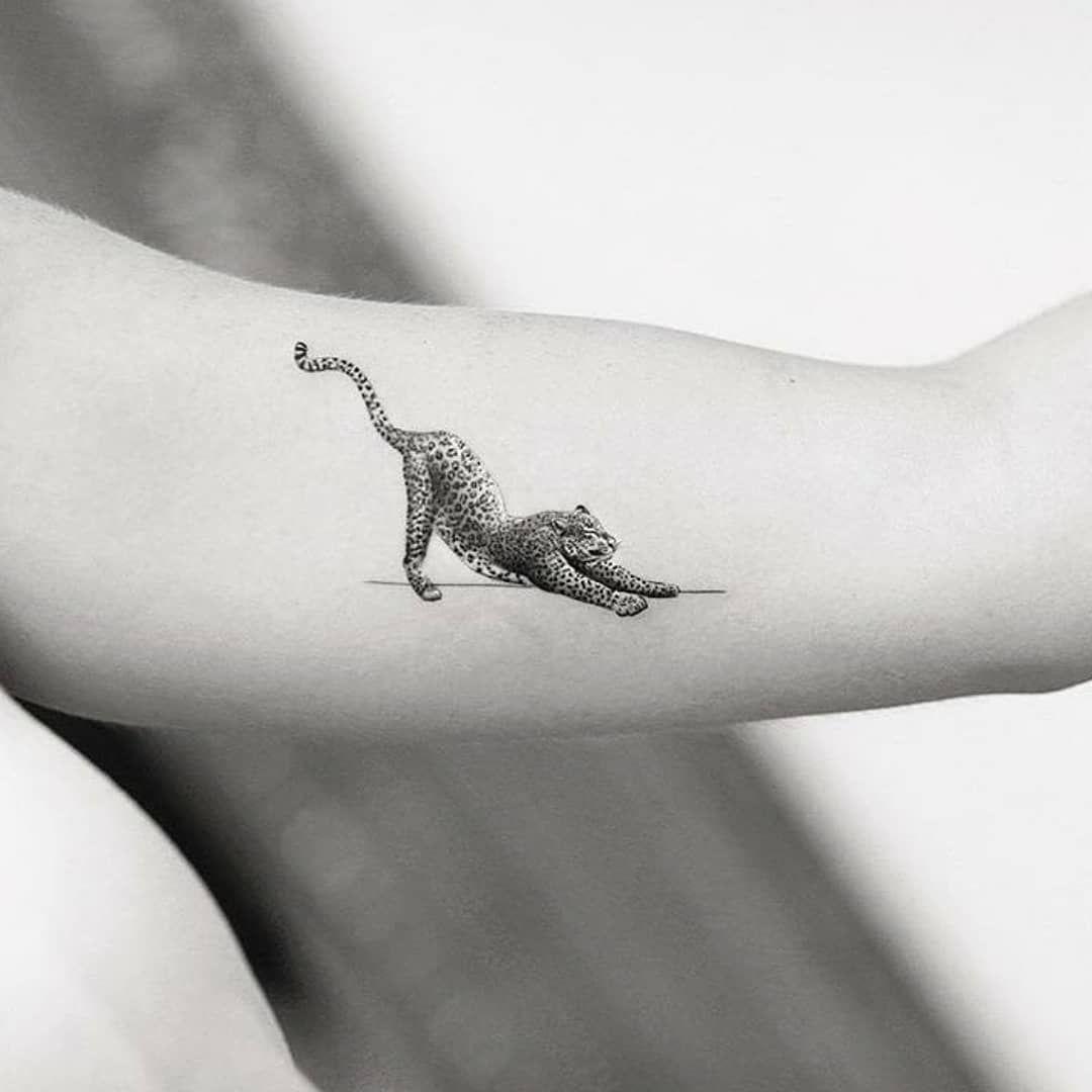 60 Inspirational Animal Tattoos And Designs For Animal