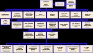 Organizational Chart Of The United