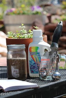 Diy soil sample test find out what your soil is made of for What is soil made out of