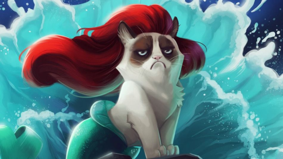 Internets Most Famous Animated Cat