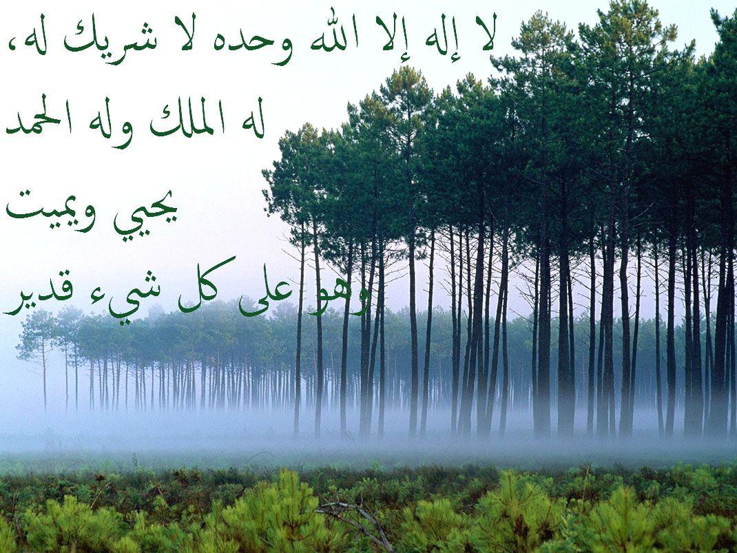 لا إله إلا الله وحده لا شريك له له الملك وله الحمد يحيي ويميت وهو على كل شيء قدير One Tree Tree One