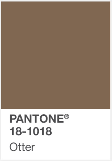 Pin By Administrie On Brown Amp Ecru Tones Pantone