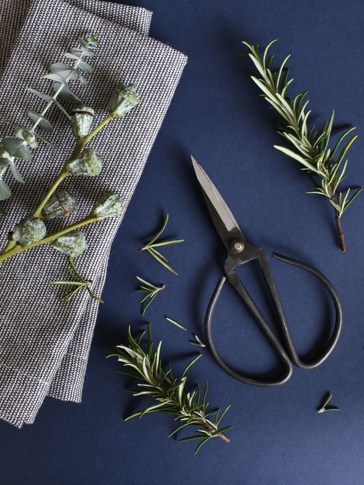 Rosemary + eucalyptus + vintage scissors