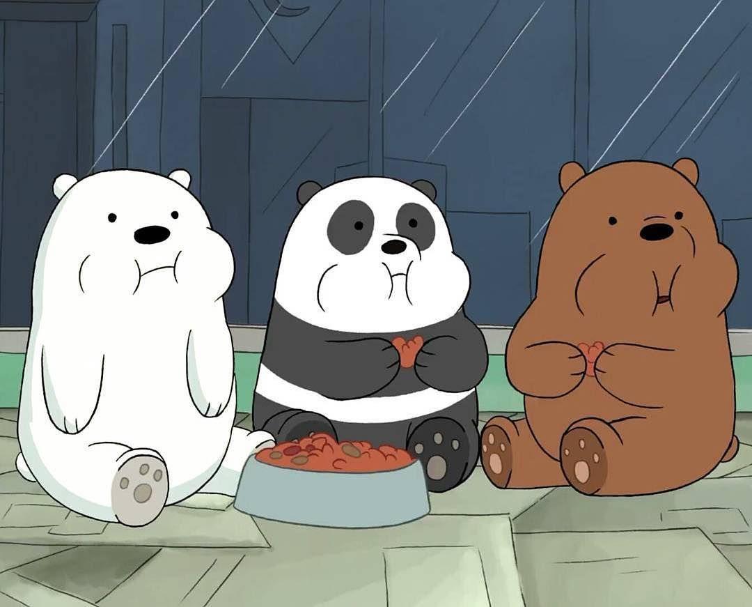 A Animacao We Bare Bears Ursos Sem Curso Narra A Historia De Pardo Panda E Polar Tres Forasteiros Tentan Urso Desenho Animado Ursos Fofos Wallpaper De Urso