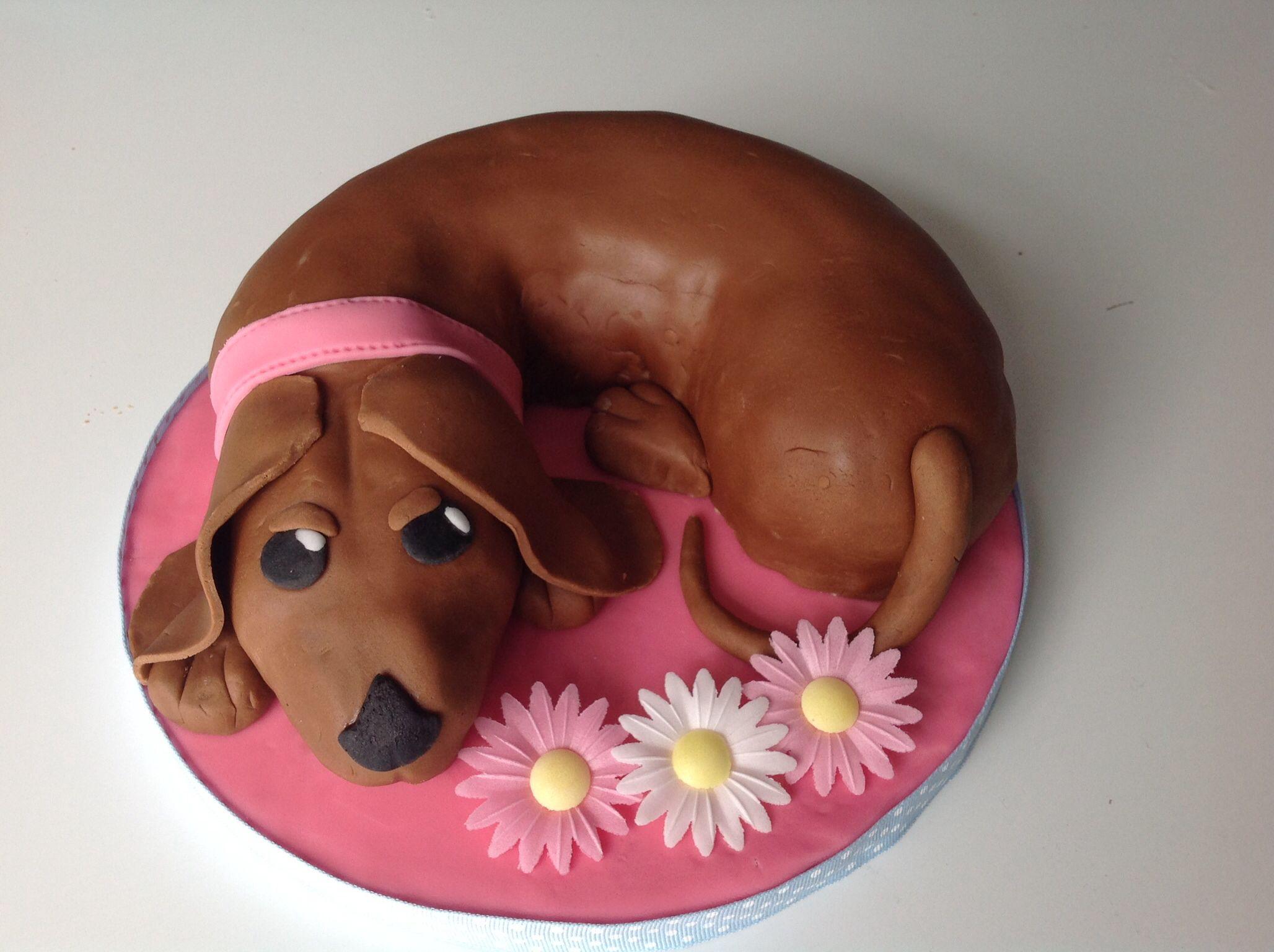 Sausage Dog Birthday Cake Bethany Birthday Ideas Pinterest