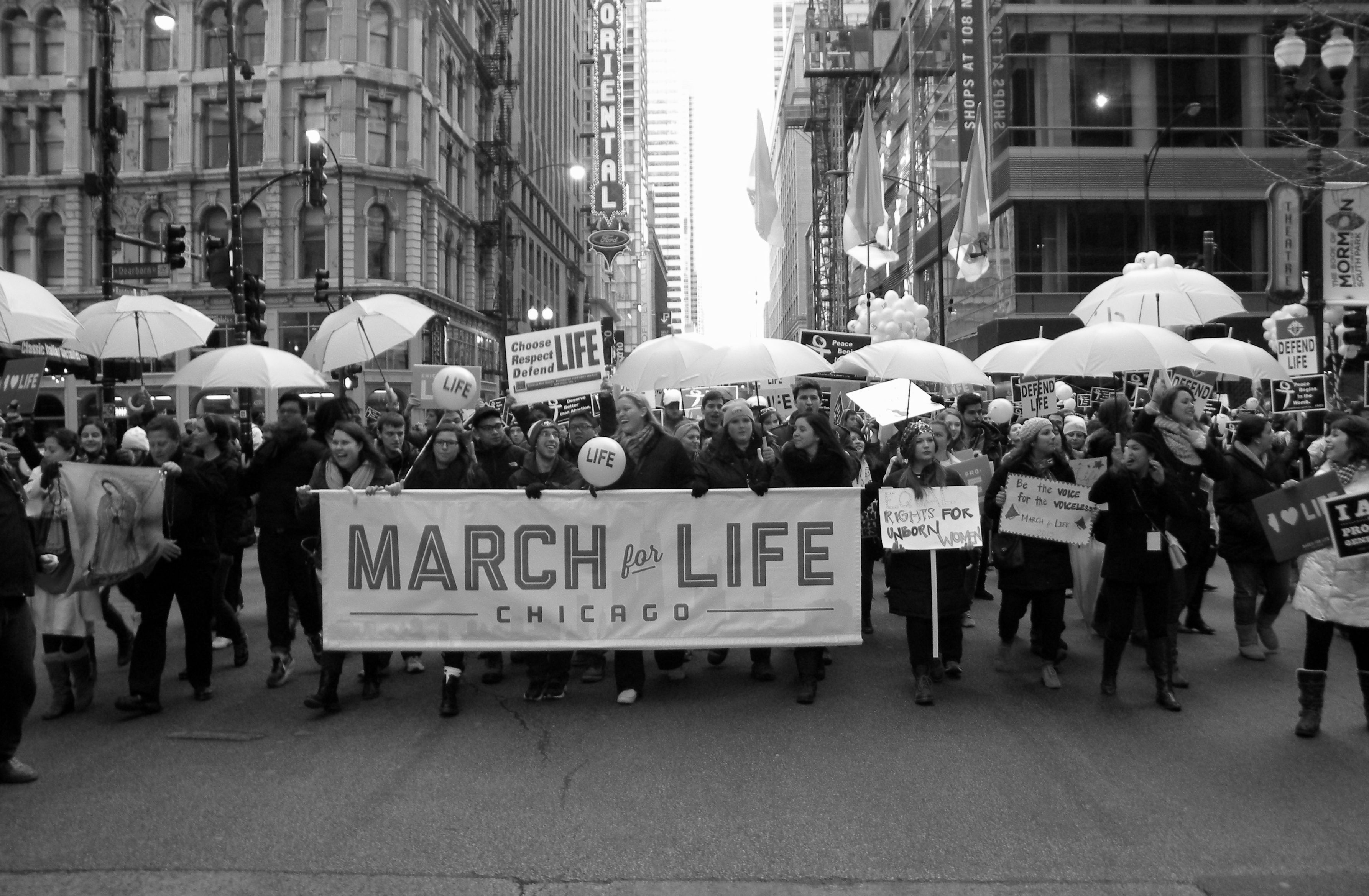 Chicago S March For Life 2015 Pro Life Marchers Take To The Streets Of Downtown Chicago To Celebrate Life Downtown Chicago Life Celebration Of Life