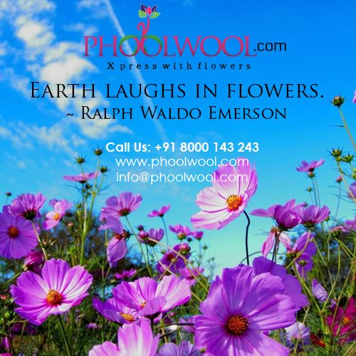 Earth laughs in flowers.~ Ralph waldo emerson