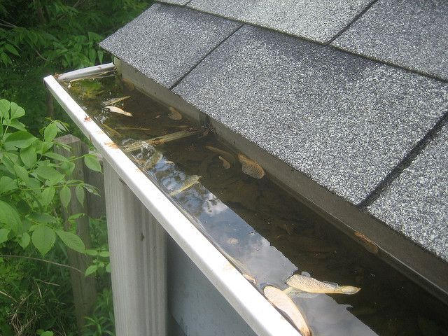 How To Clean Your Gutters The Easy Way Get Started Before The