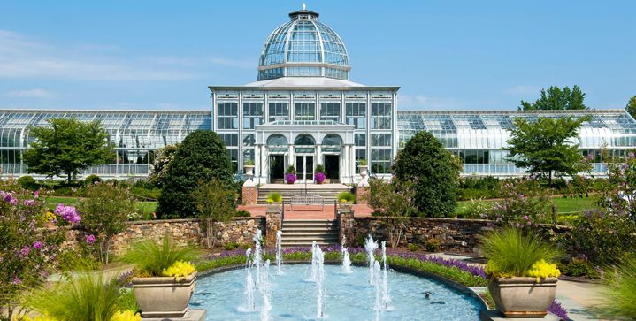 Lewis Ginter Botanical Garden -- whether at work or at play -- it's a gem.