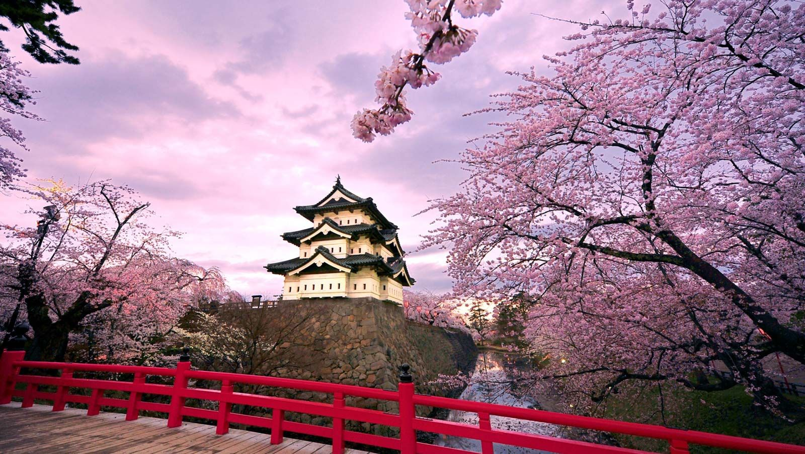 Ultimate 2020 Cherry Blossom Japan Guide Everything You Need To