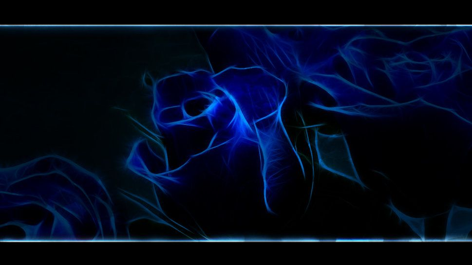 Cliserpudo Black And Blue Rose Wallpaper Images
