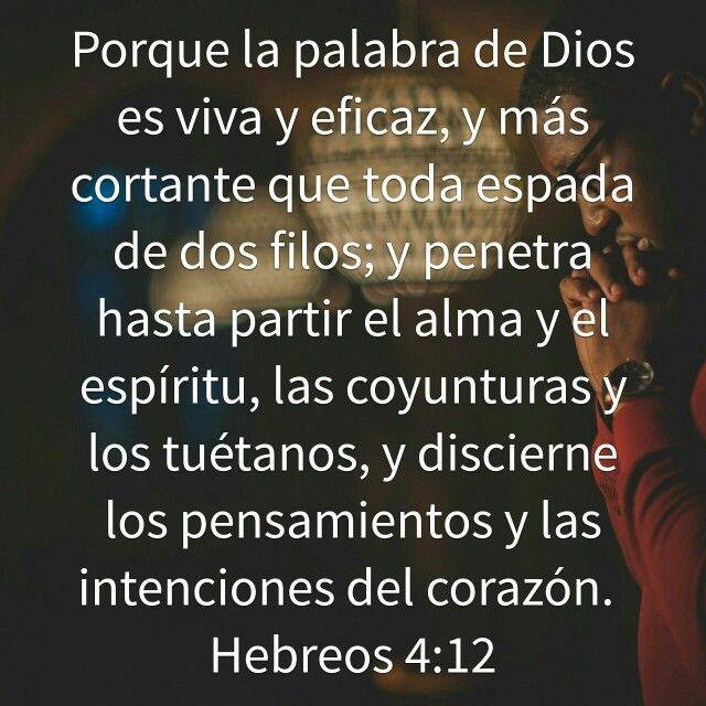 Versiculos De La Biblia De Animo: Pin By Lisandro Méndez On Versículos Bíblicos