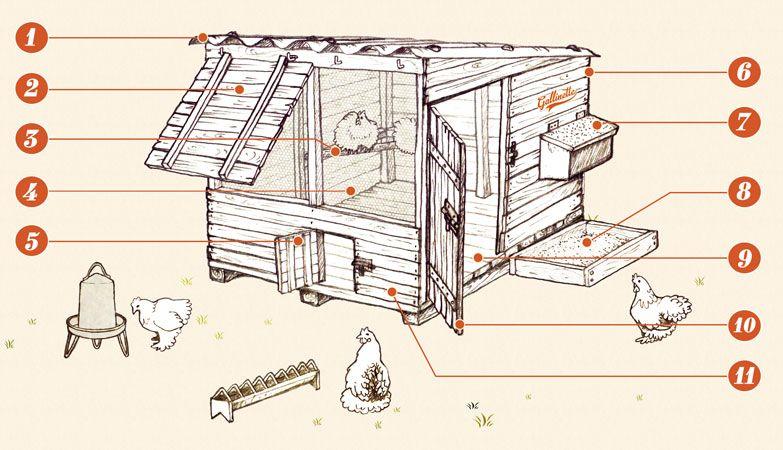 Construire un poulailler pour le bien tre de nos poulettes un logement sain des poules en - Construire son poulailler soi meme plan ...