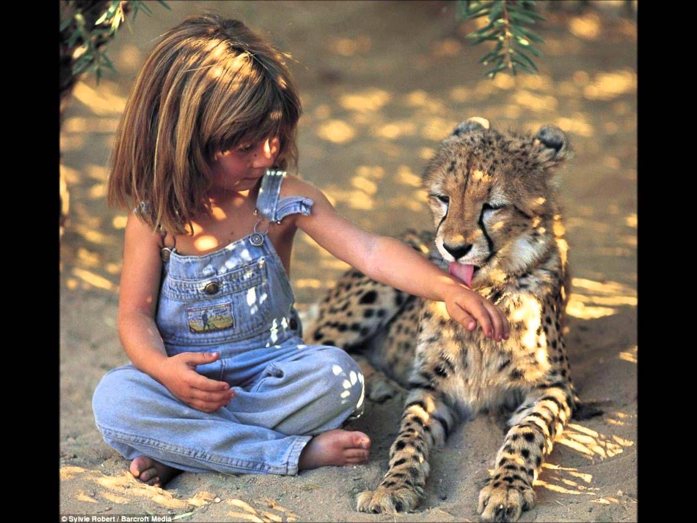 Tippi Degre Youtube Vahsi Hayvanlar Afrika Hayvan