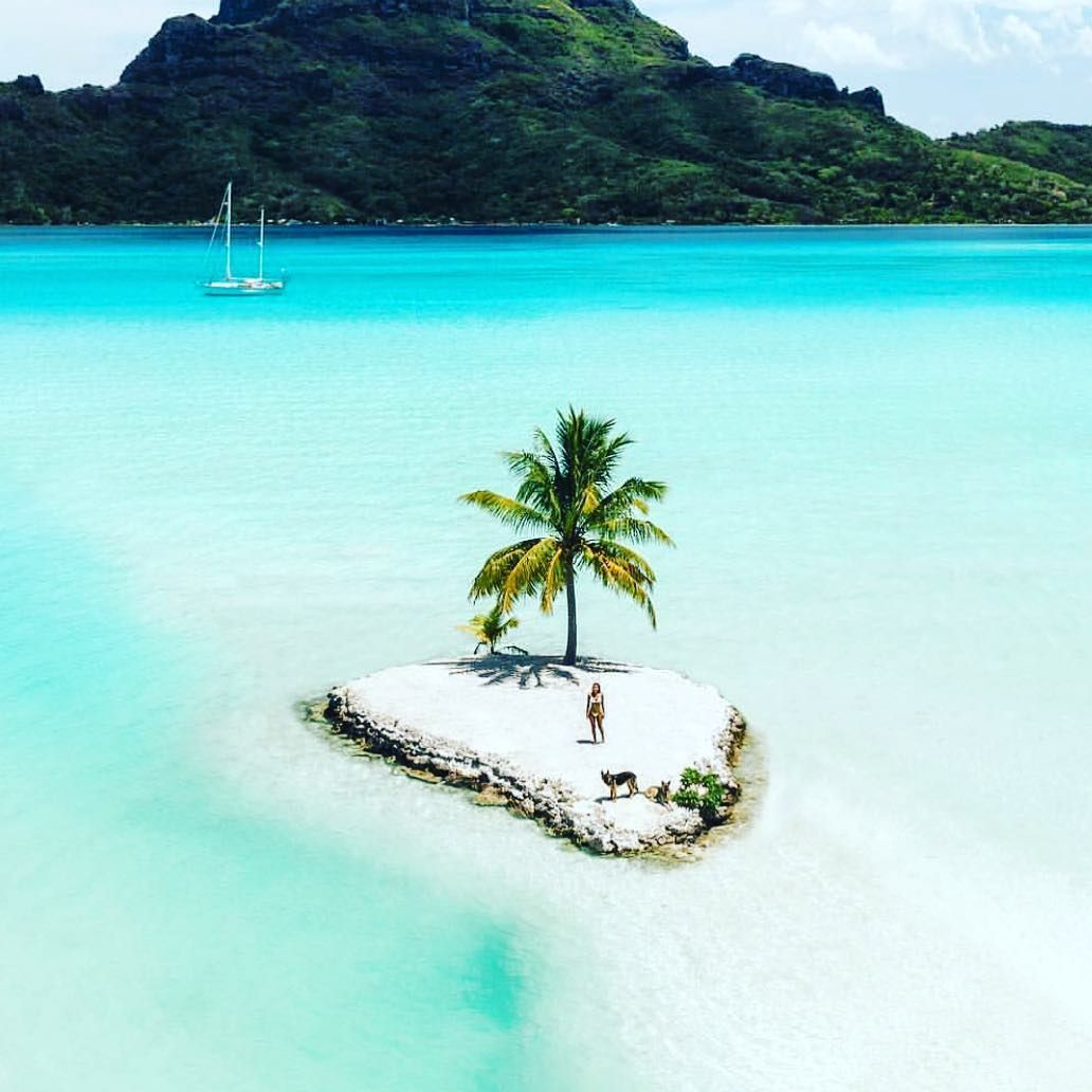Deserted Island Beach: If You Get Stucks In A Deserted Island, Who Do You Want To