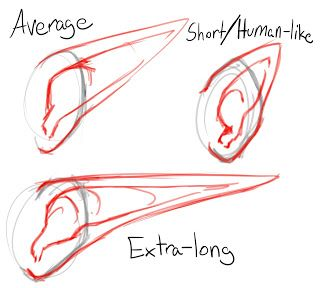 How To Draw Pointed Elf Ears Draw Central How To Draw Ears Elf Drawings Elf Ears