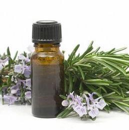 Rozemarijn tegen vermoeide benen (massage-olierecept onderaan site)