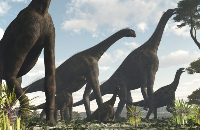 Top Ten Weirdest Prehistoric Creatures #prehistoriccreatures Top Ten Weirdest Pr...  #Creatures #Prehistoric #prehistoriccreatures #Ten #Top #weirdest #prehistoriccreatures
