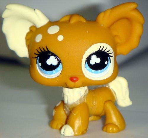 Littlest pet shop images chihuahua 528 rare wallpaper and littlest pet shop images chihuahua 528 rare wallpaper and voltagebd Choice Image