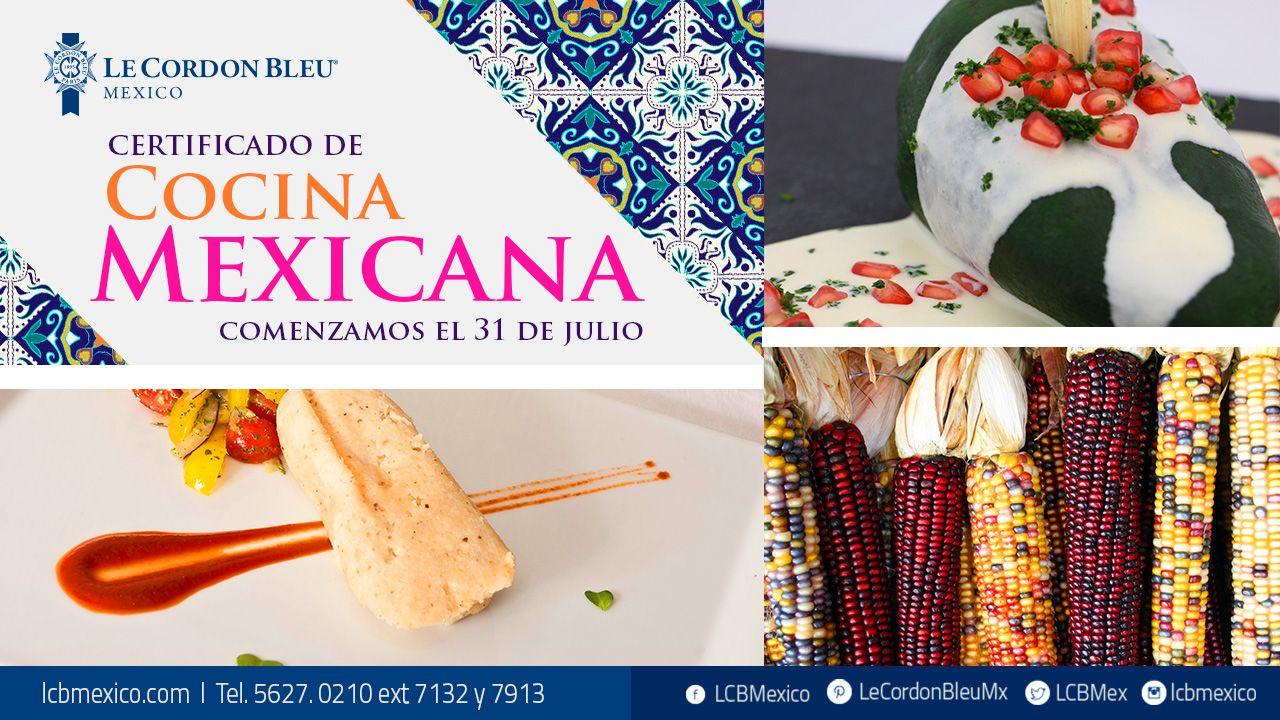 Amas la cocina mexicana especialízate en ella en nuestro