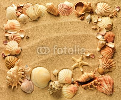 Cuadro en lienzo conchas de mar con arena como fondo pixers vivimos para cambiar as - Como cambiar de look en casa ...