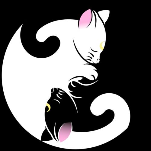 Yin Yang Cat Dessin Chat Illustration De Chat Tatouage Chat