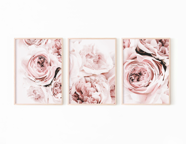 Peony Print Set Of 3 Flower Print Peony Wall Art Blush Pink Etsy Pink Peonies Print Pink Peonies Art Peony Print
