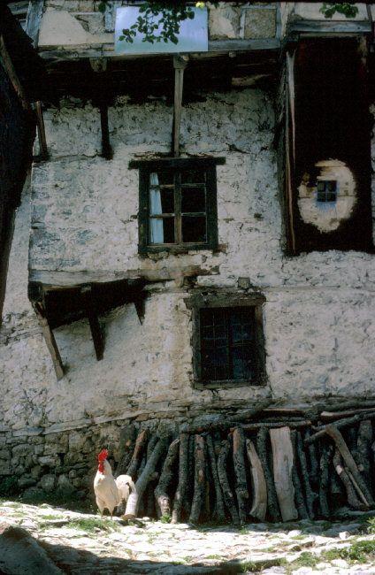 Ferdinando Scianna 1984