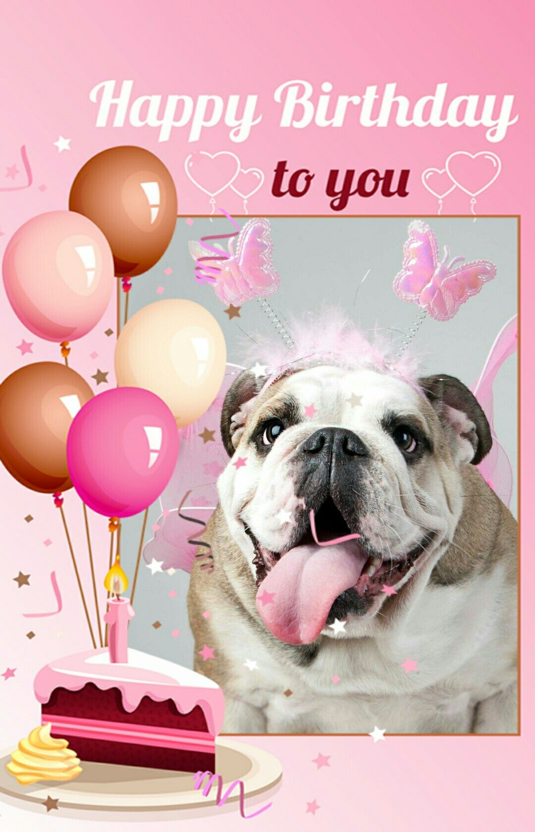 Happy Birthday English Bulldog Bulldog Happy Birthday Happy