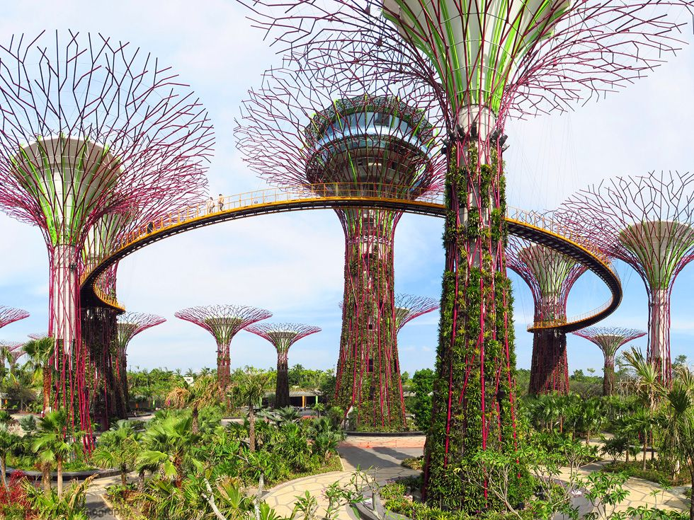 Singapore's Futuristic Park Gardens by the Bay Jardins