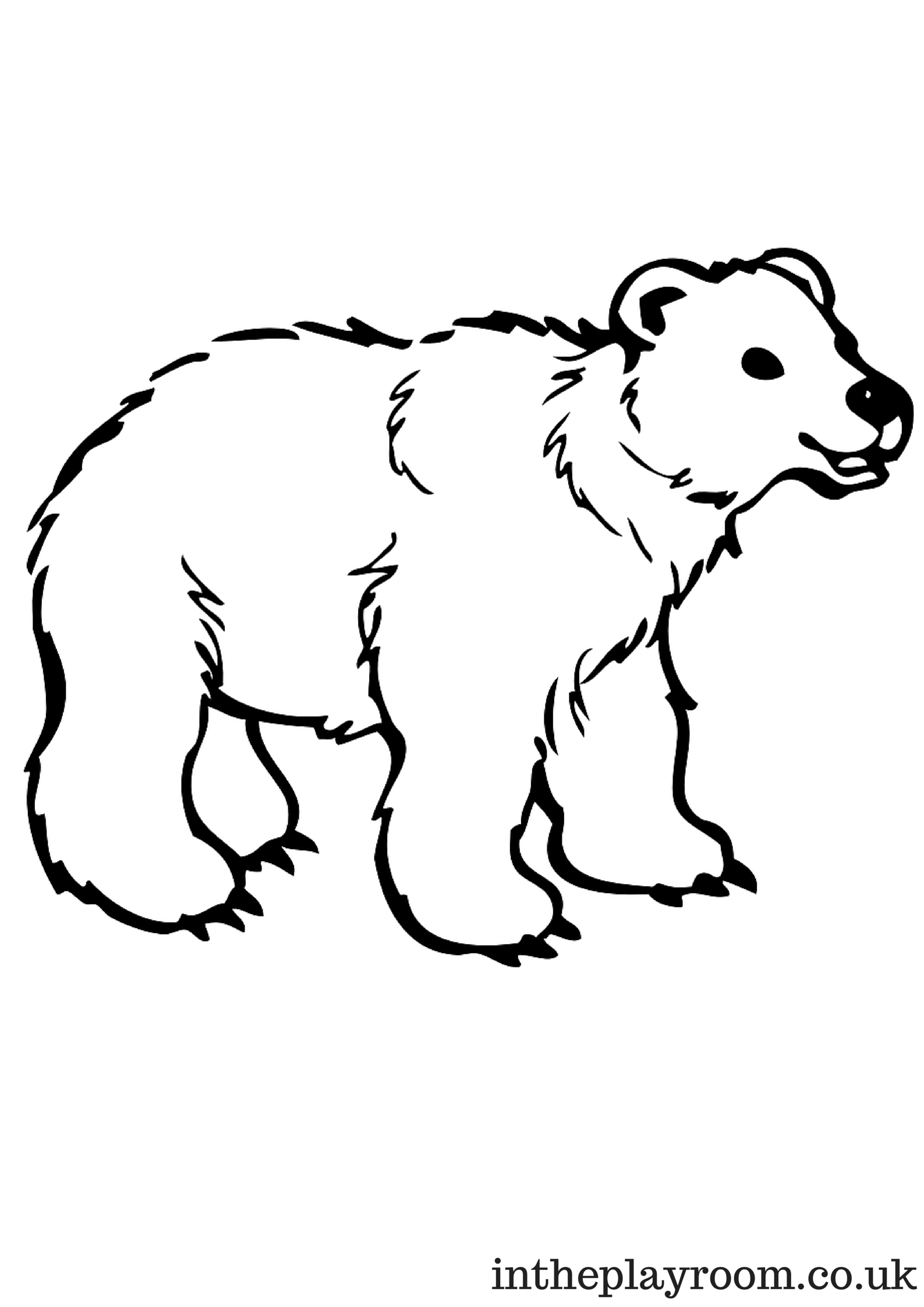 - Polar Bear Colouring Page For Kids Animal Coloring Pages, Bear