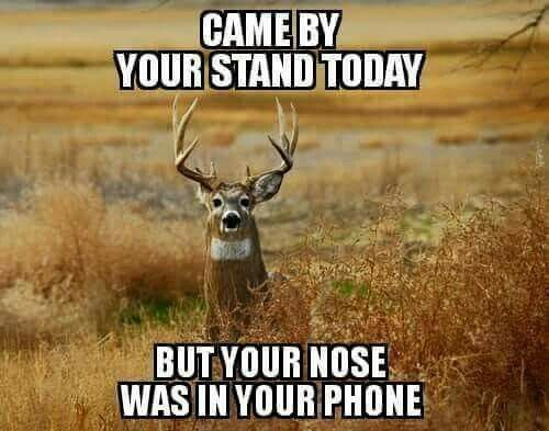 Funny Hunting Quotes Prepossessing Cameyour Stand Todaybut Your Nose Was In Your Phone
