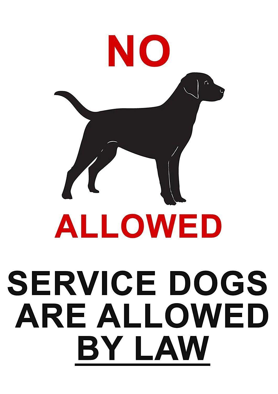 Service Dog Vest Premium Quality Service Dog Harness