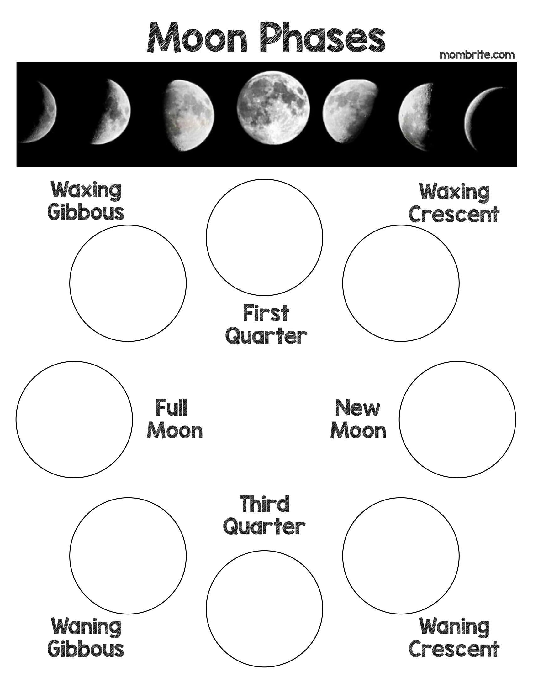 Oreo Cookie Moon Phases Activity Free Worksheet Moon Phases Activities Oreo Moon Phases Moon Activities