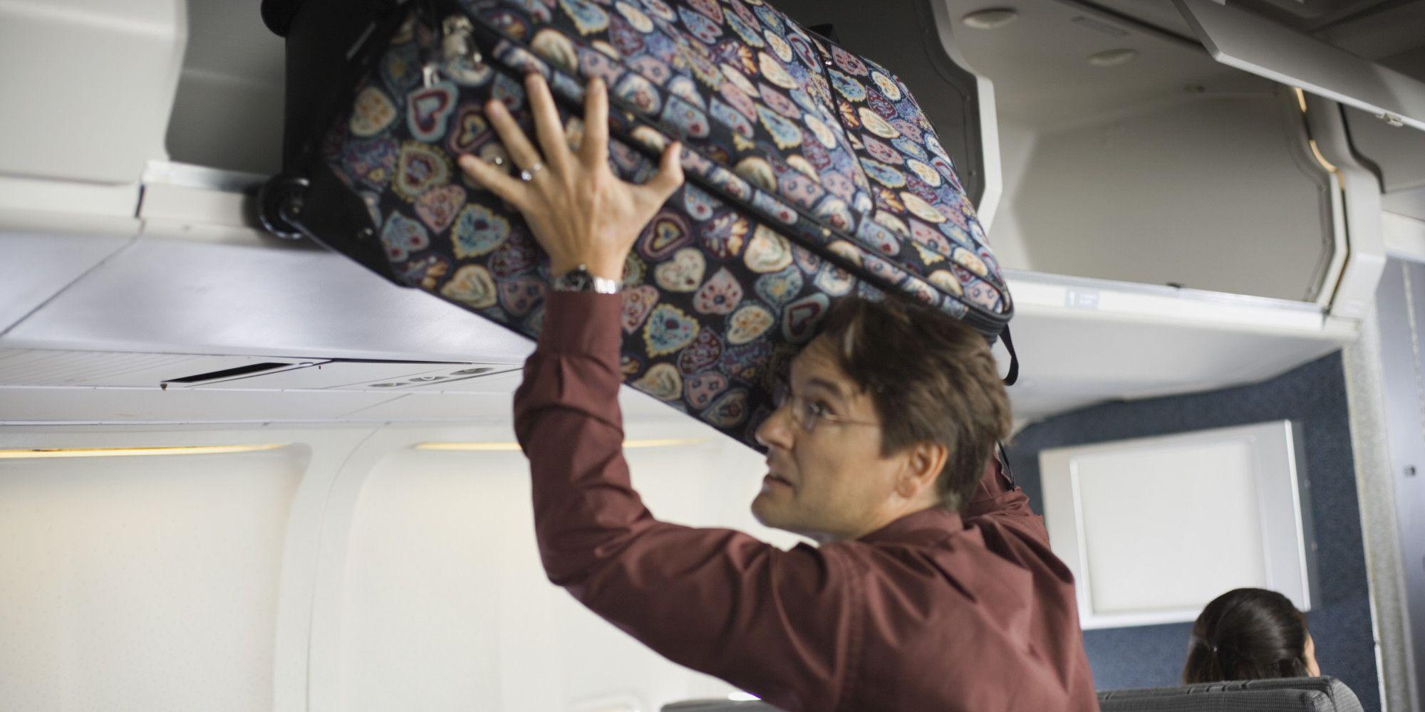 Loose Bat Terrorizes Spirit Airlines Passengers MidFlight
