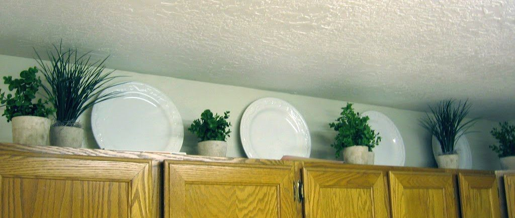 Plants For Kitchen To Decorate It: Between 3 SistersBetween 3 Sisters This Person Chose