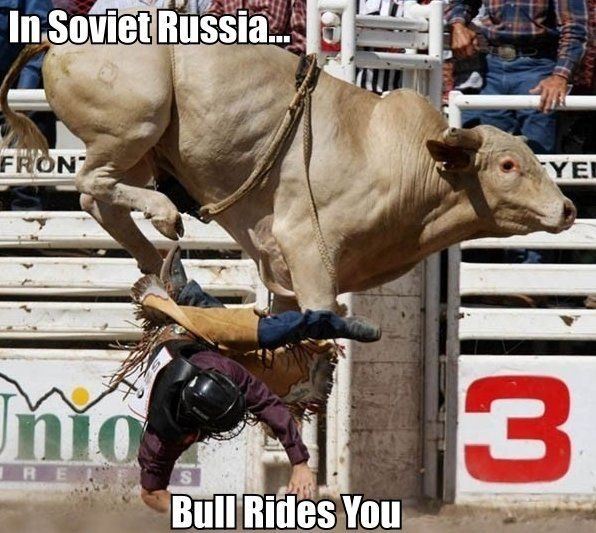 61c73b7499fd39774ad45950e42f7495 bull rides you cowgirls pinterest hilarious and humor