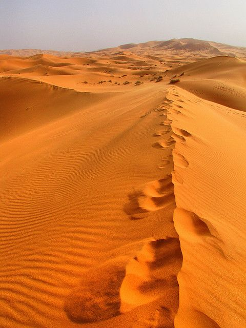 Getty Images Photos Deserts Of The World Sahara Desert Beautiful Places On Earth