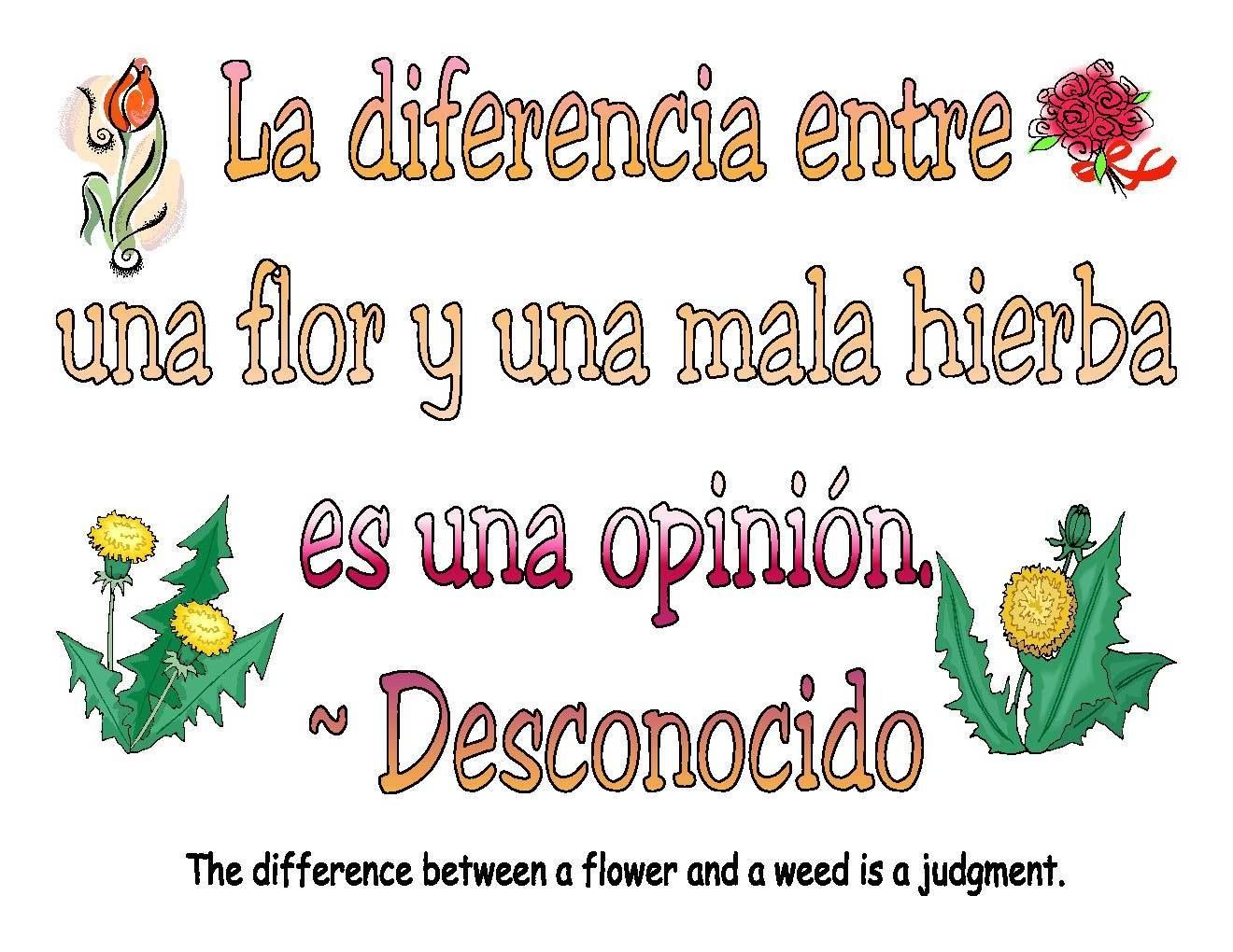 30 inspirational quote signs for your classroom spanish a