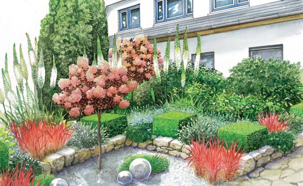 Eine Gartenbrache wird zur Blüten-Oase Oase, Für sie und Blüten - mein schoner garten vorgarten