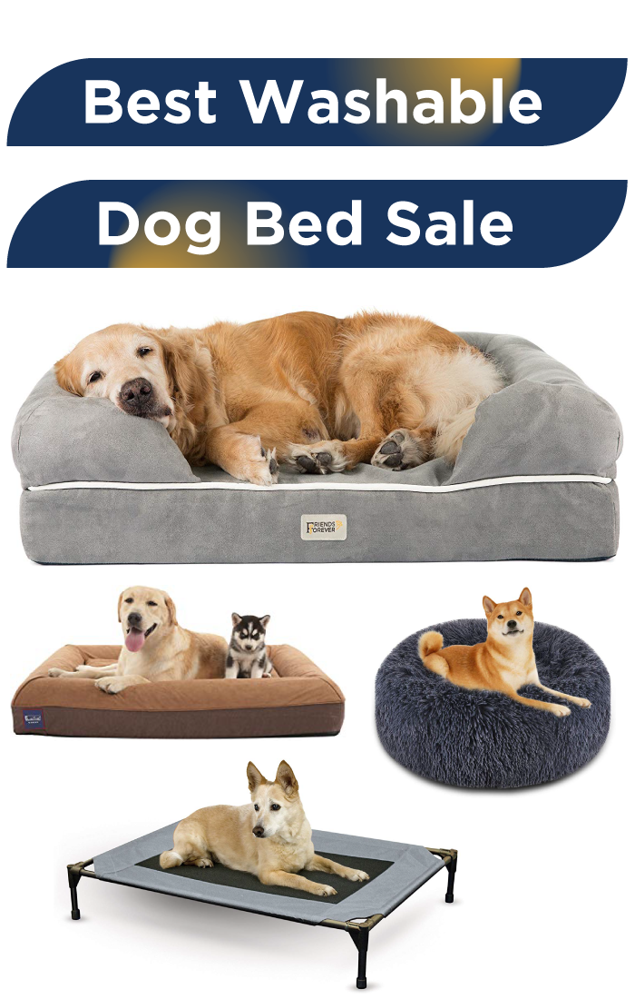 Best Washable dog bed to Buy on Amazon Top 100 Best