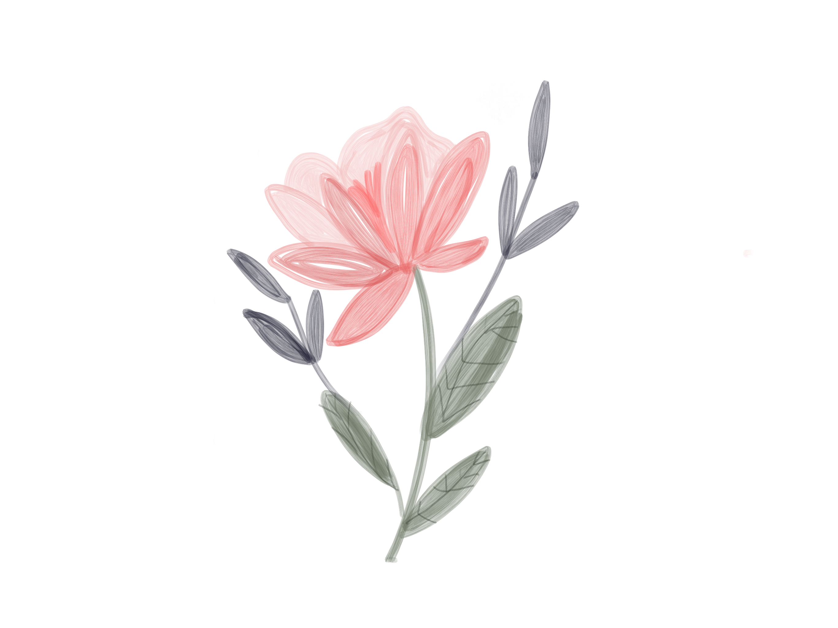 Cute Illustrated Pink Flower
