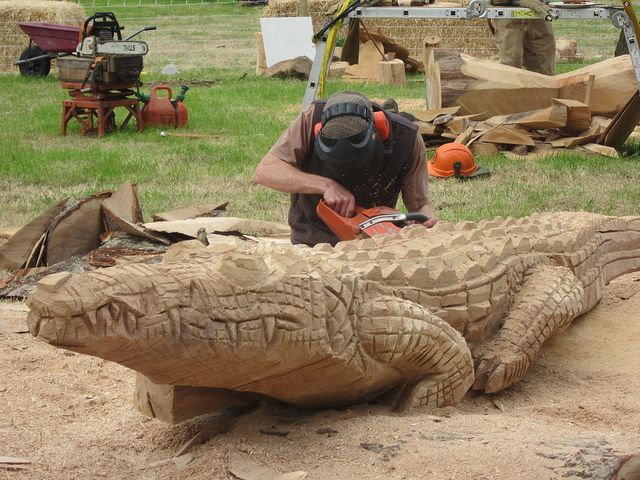 Chainsaw carving crocodile woodfest wood
