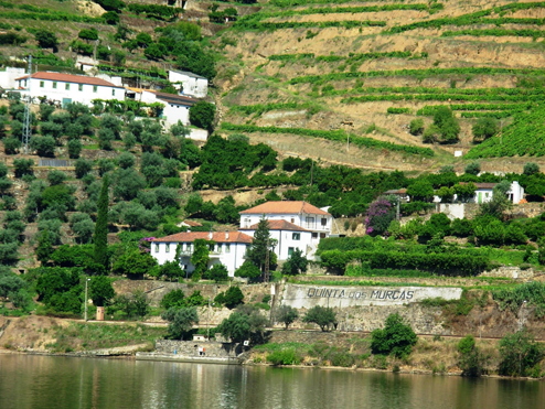 Douro Valley, Douro River, Portugal