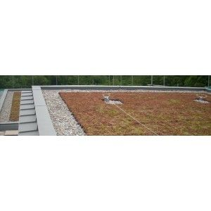 Best Instagrufe Brown Grufe Tiles Self Install Green Roof Kit Inc Protection Fleece Green Roof 400 x 300