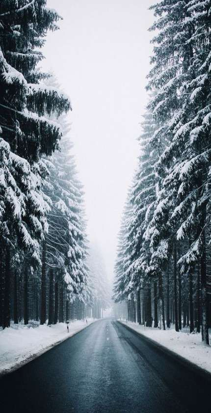 Best photography winter wallpaper 46 Ideas #winterwallpaper