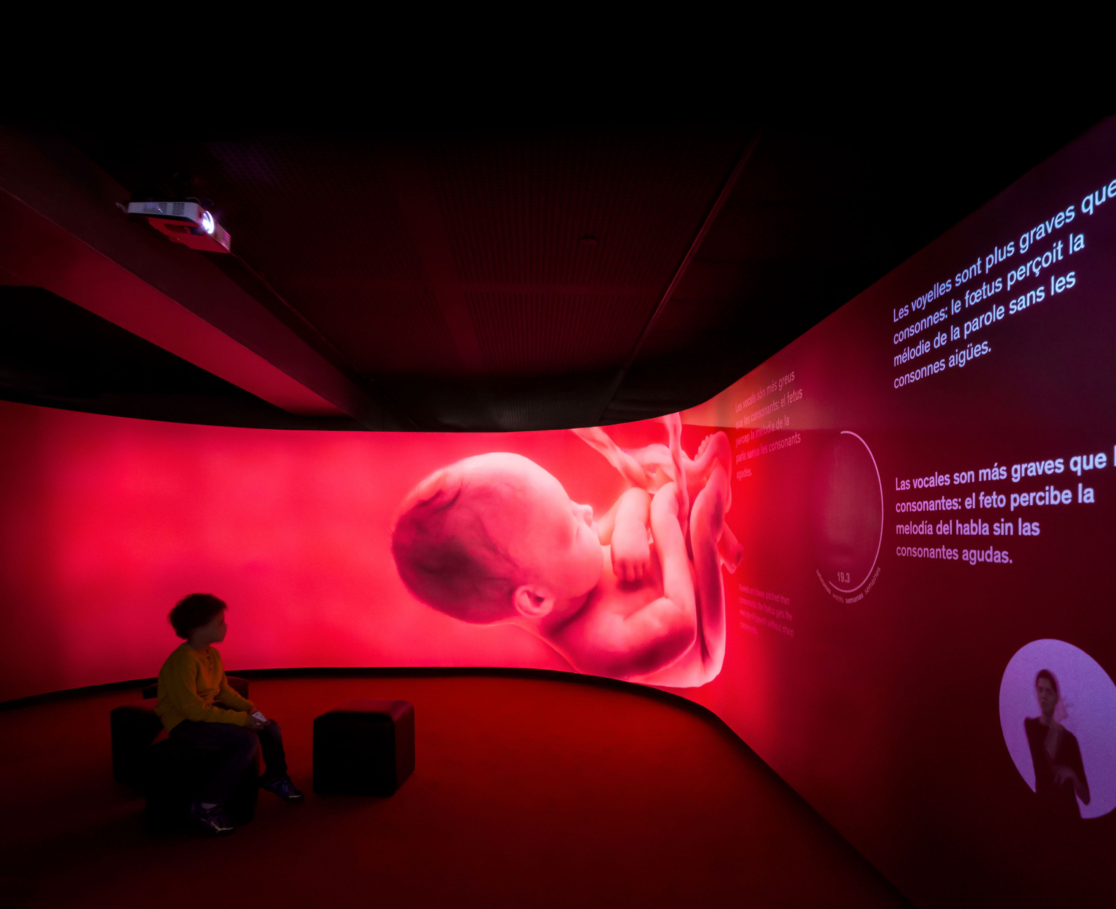 Immersive environments and 360º experiences #exhibitiondesign